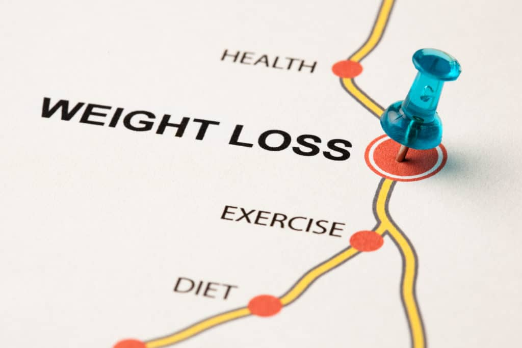 Weight loss and dieting programme under the guidance of a weight loss coach/mentor