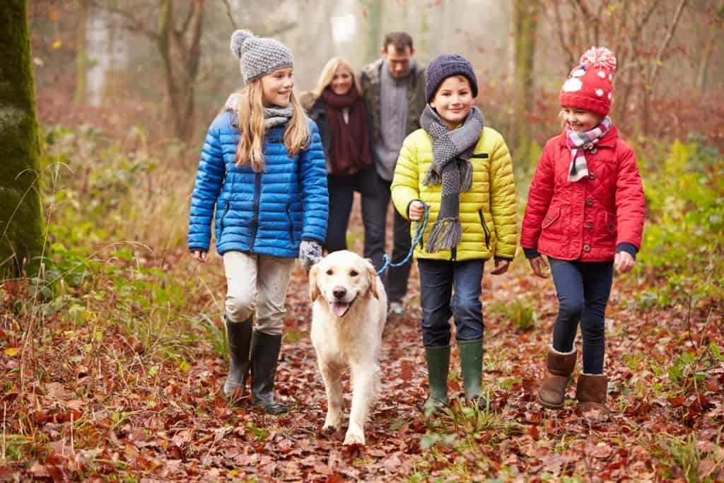 Healthy family walking with dog in woods
