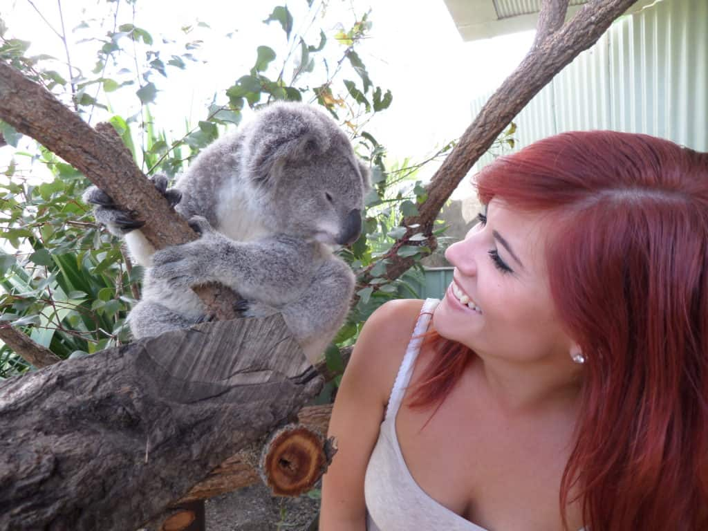 Hannah Bimpson with koala, raising money for the wildlife affected by the Australian bushfires