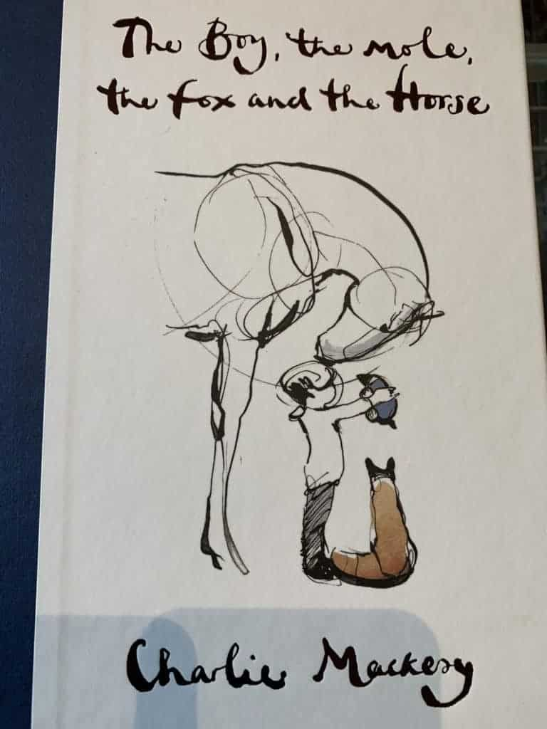 The Boy, the Mole, the Fox and the Horse by Charlie Mackesey