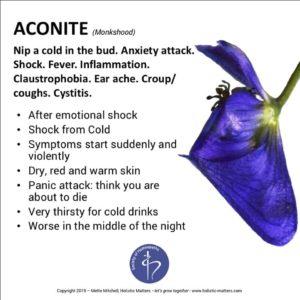 Aconite: post-lockdown calmer