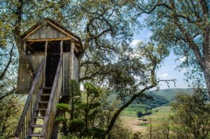 The treehouse meditation to take you to a place where you always feel safe and at ease