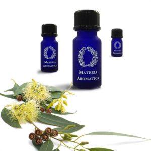 Materia Aromatica Eucalyptus Globulus oil