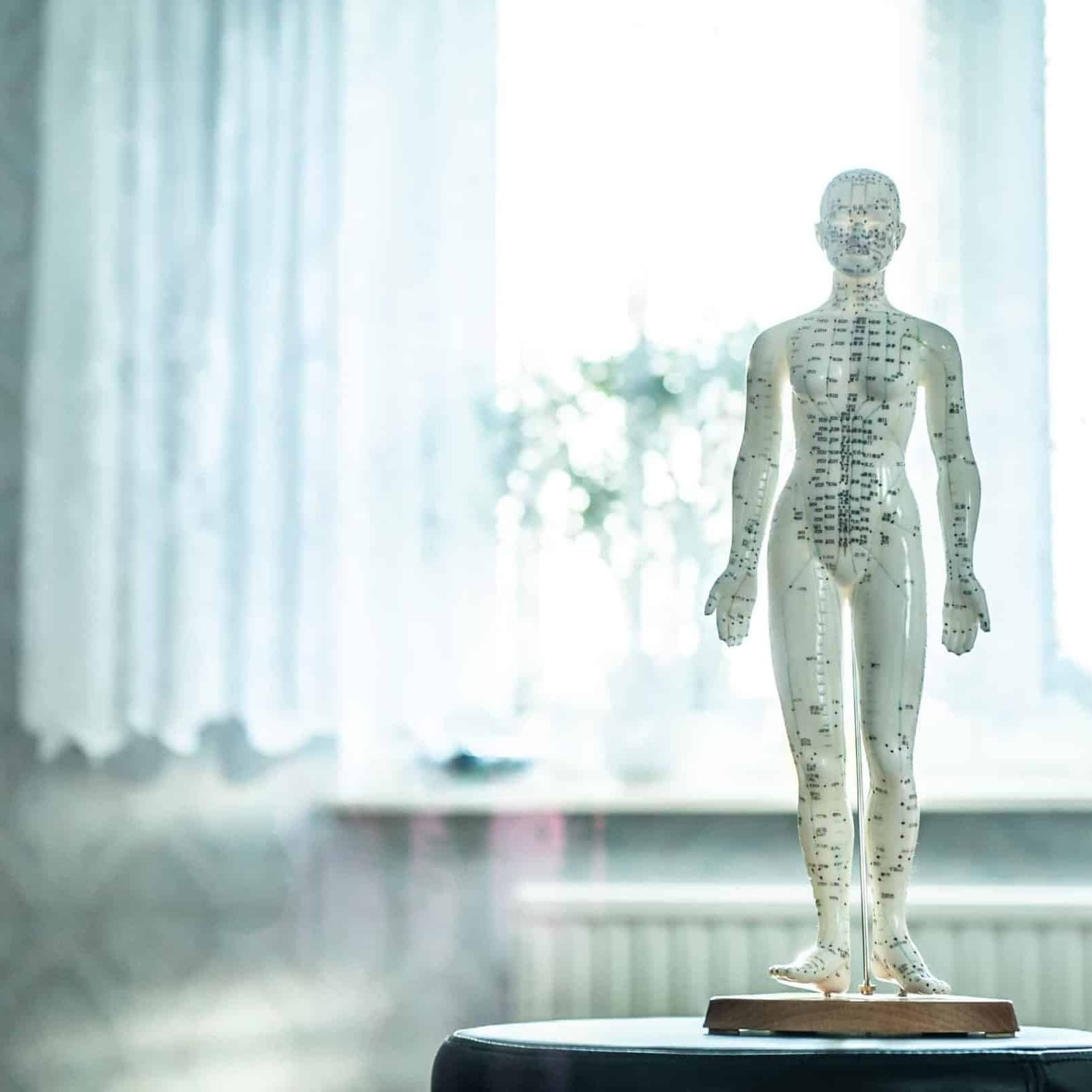 Canva - Acupuncture Statue in a Clinic